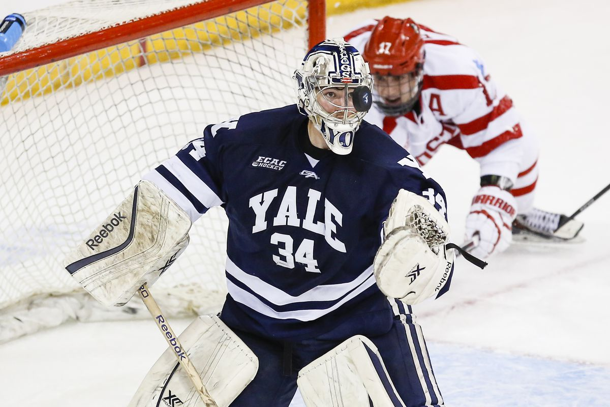 Yale goaltender Alex Lyon is one of four finalists for last year's Mike Richter Award on the 2015-16 Watch List.