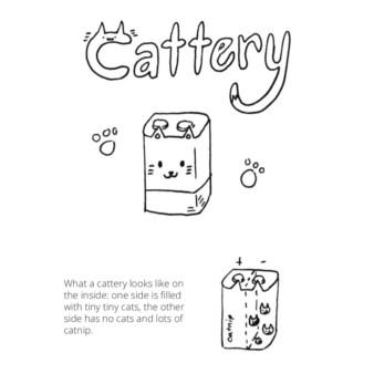How your cattery works