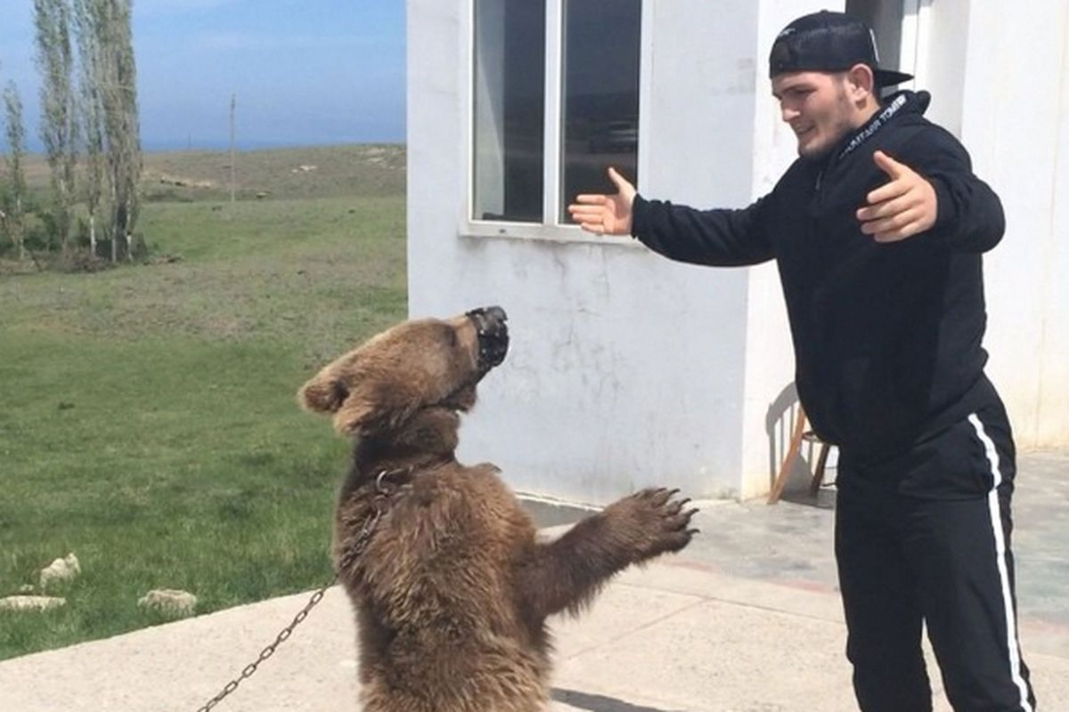 PETA calls for UFC to evaluate its relationship with Khabib following 'loathsome' treatment of chained bears