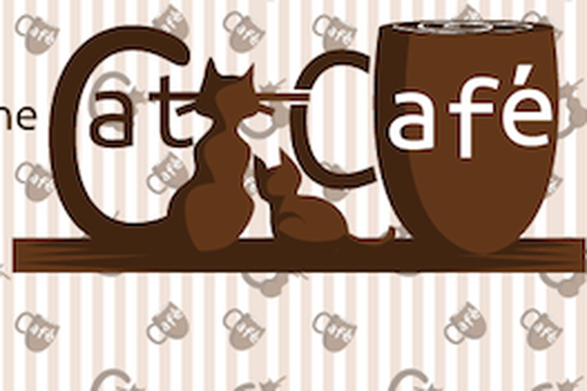 San Diego Enters Race for First North American Cat Café - Eater ...