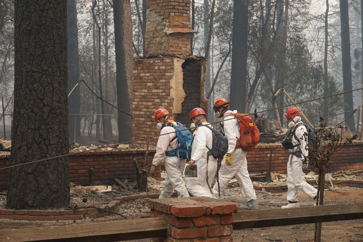 workers search for human remains in paradise california after the camp fire burned most of the town down earlier this moth after years of drought and