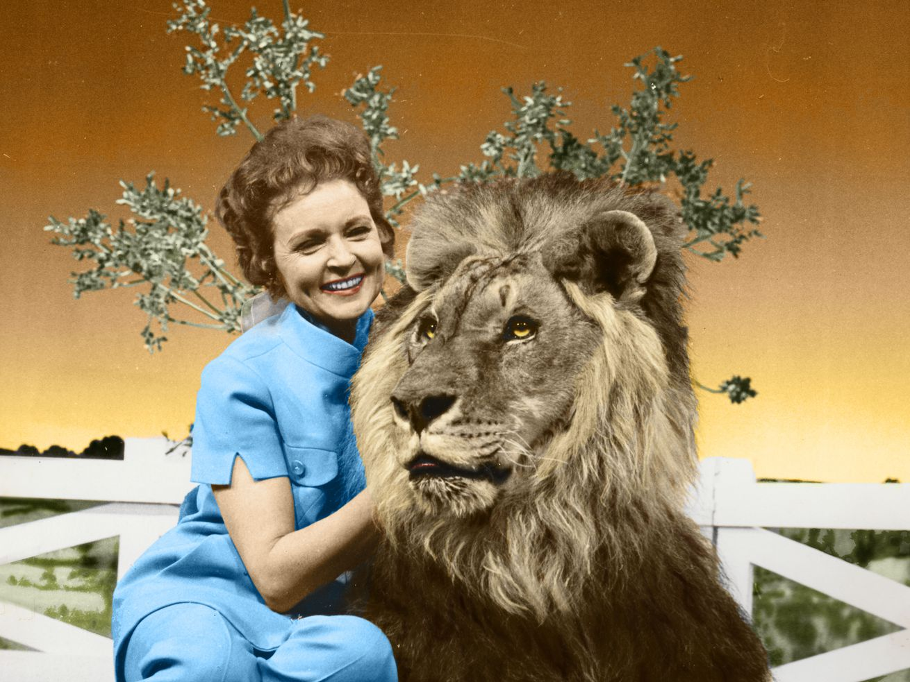 """This colorized image released by Margate And Chandler, Inc. shows actress and animal activist Betty White with a lion from her 1970s series """"The Pet Set."""""""