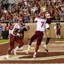 SO WR Tamorrion Tarry outfights a DB for his second TD of the game.