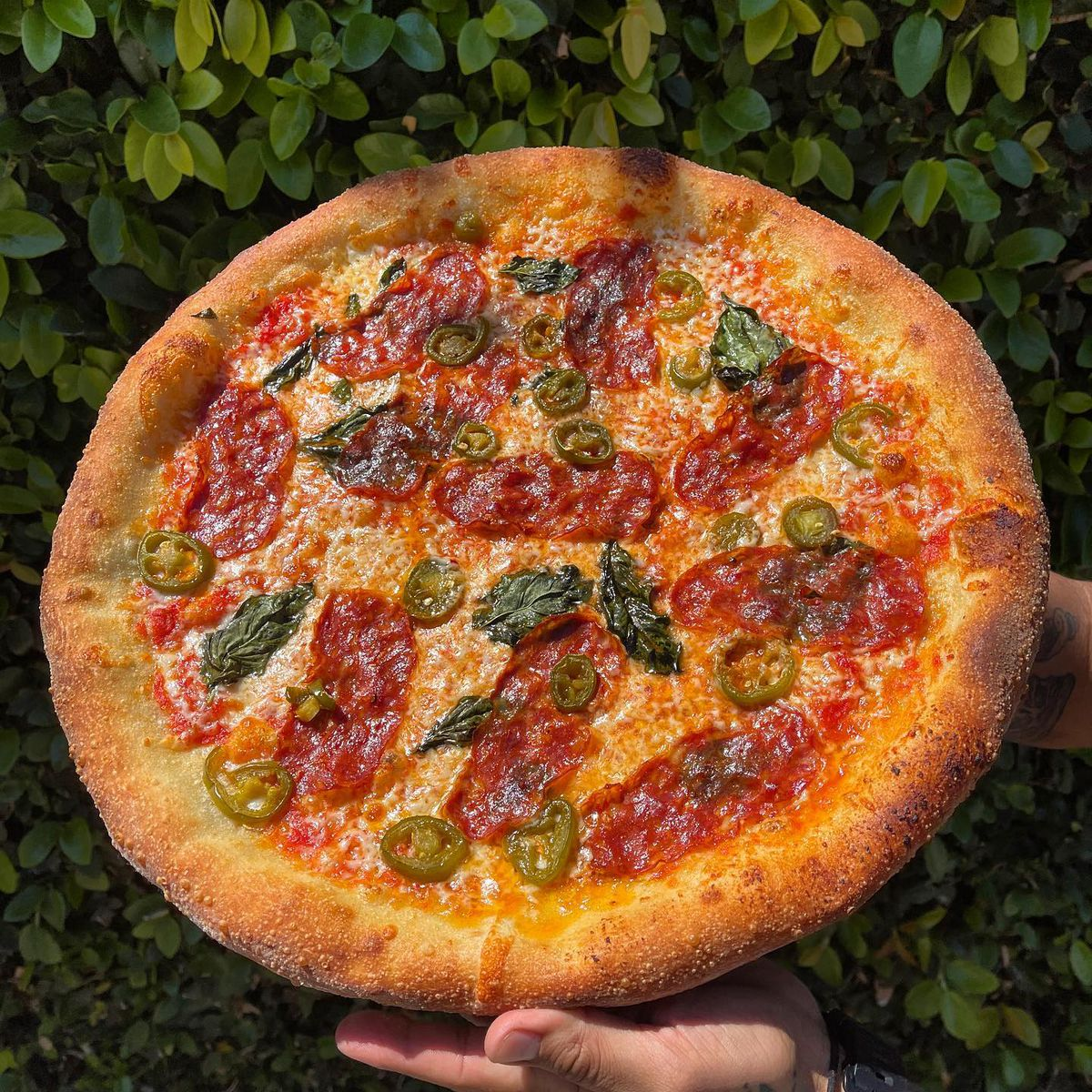 Dougie fresh pizza from Little Coyote in Long Beach.