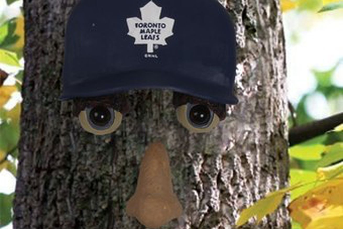 More horrors of Toronto Maple Leafs merchandise