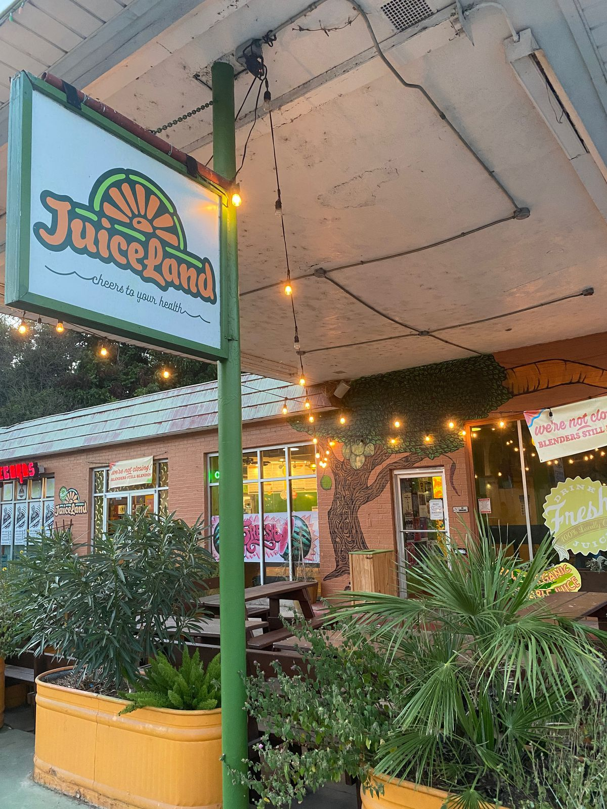 """A patio with green plants in yellow planters underneath a white sign that reads """"JuiceLand"""" in orange and green lettering."""