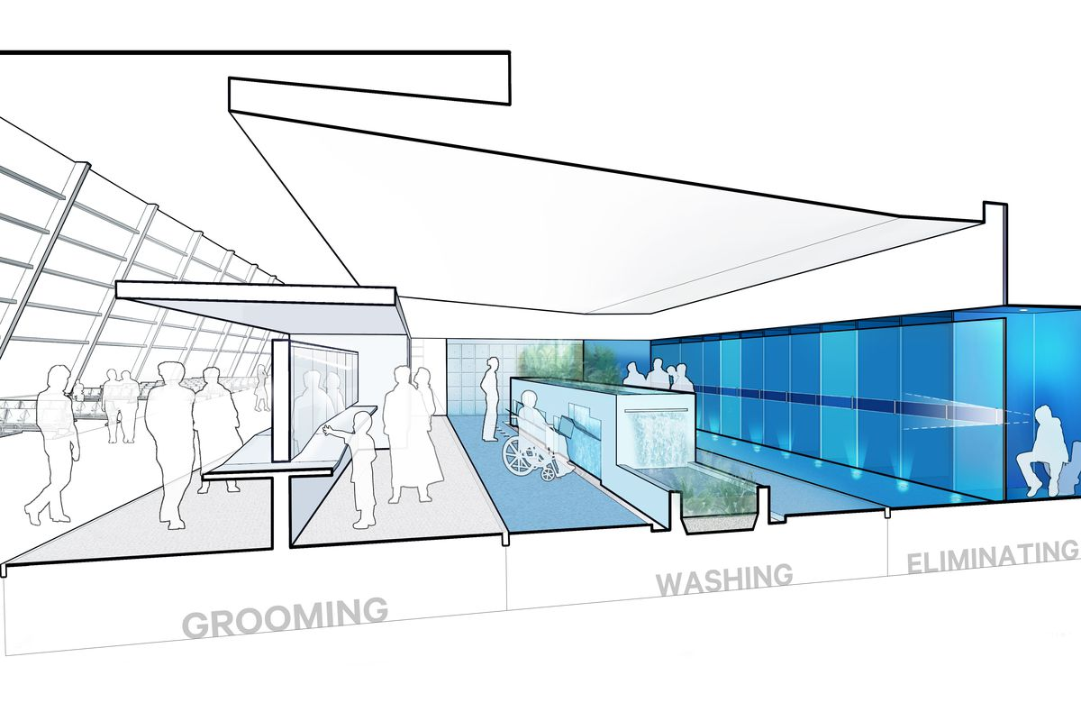 How bathroom design can be a bridge to more accessible architecture ...
