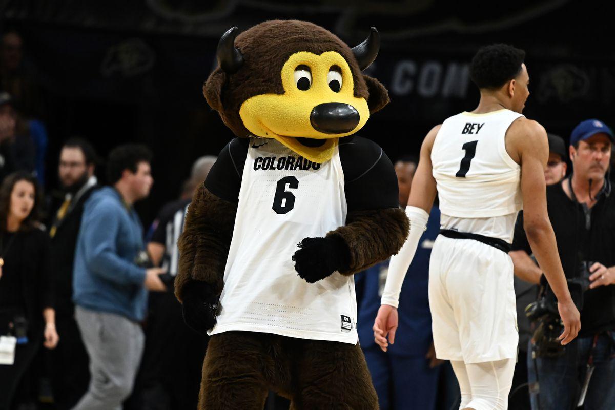 NCAA Basketball: California at Colorado
