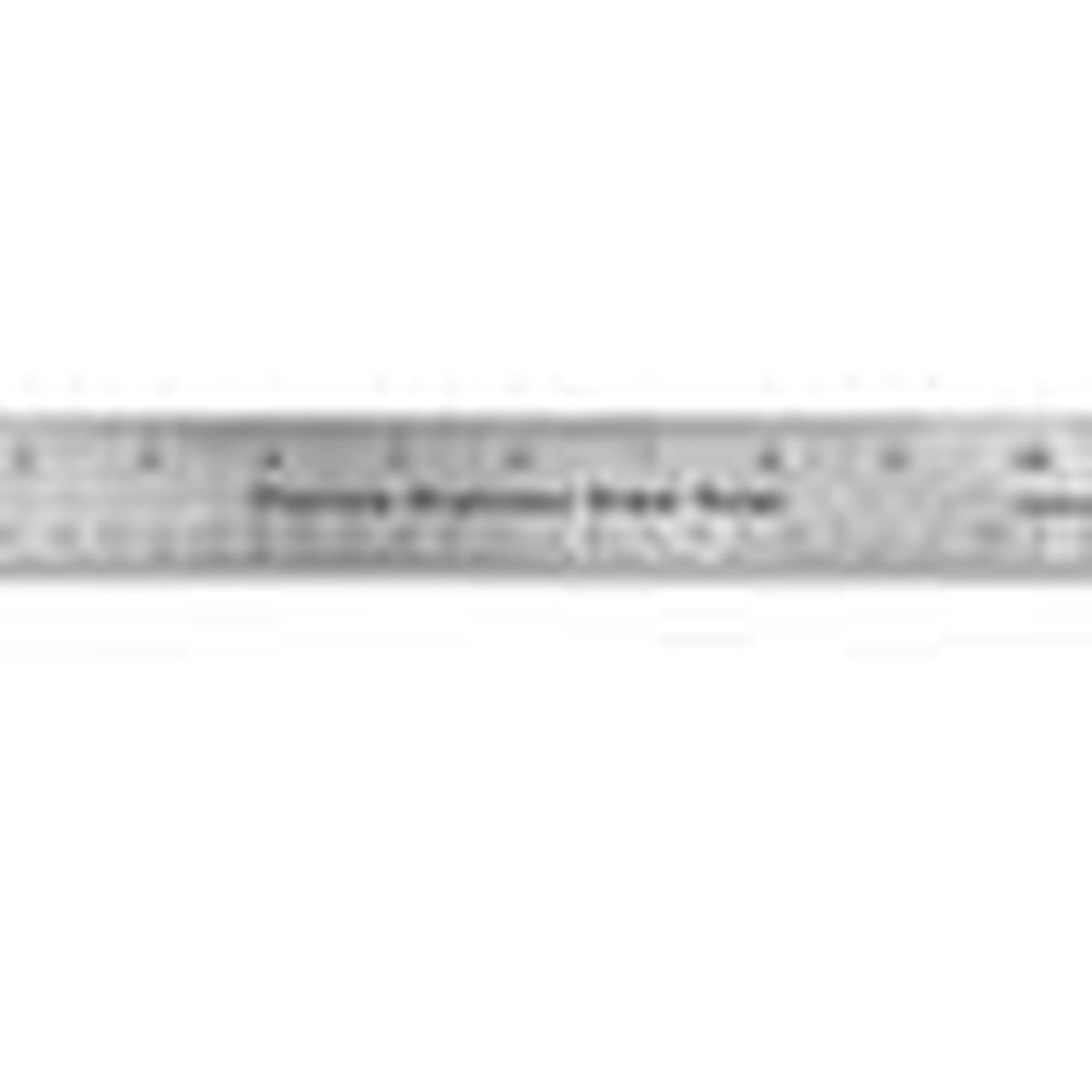 12-inch stainless steel ruler