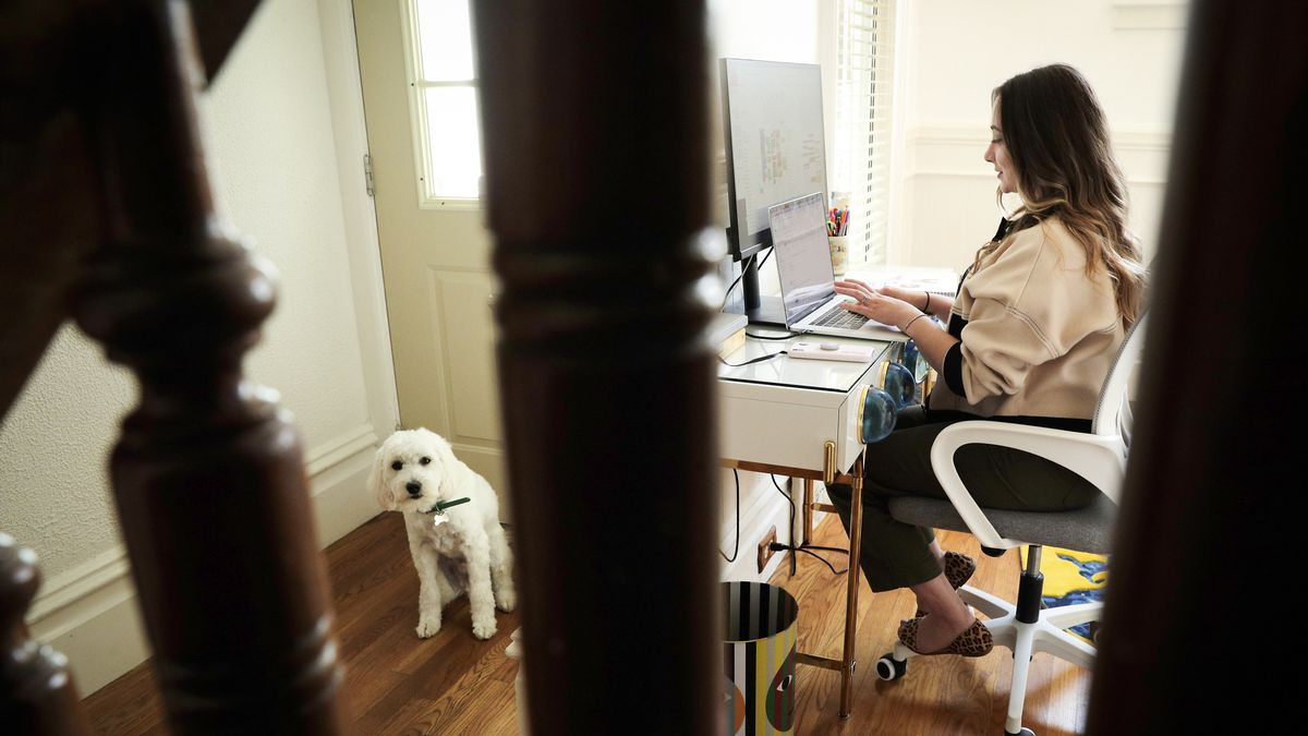 A person, seen through the rails of the stairs, sits at a desk in their home while their dog sits by the front door.