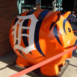 Tiger Pig! Tiger Pig!