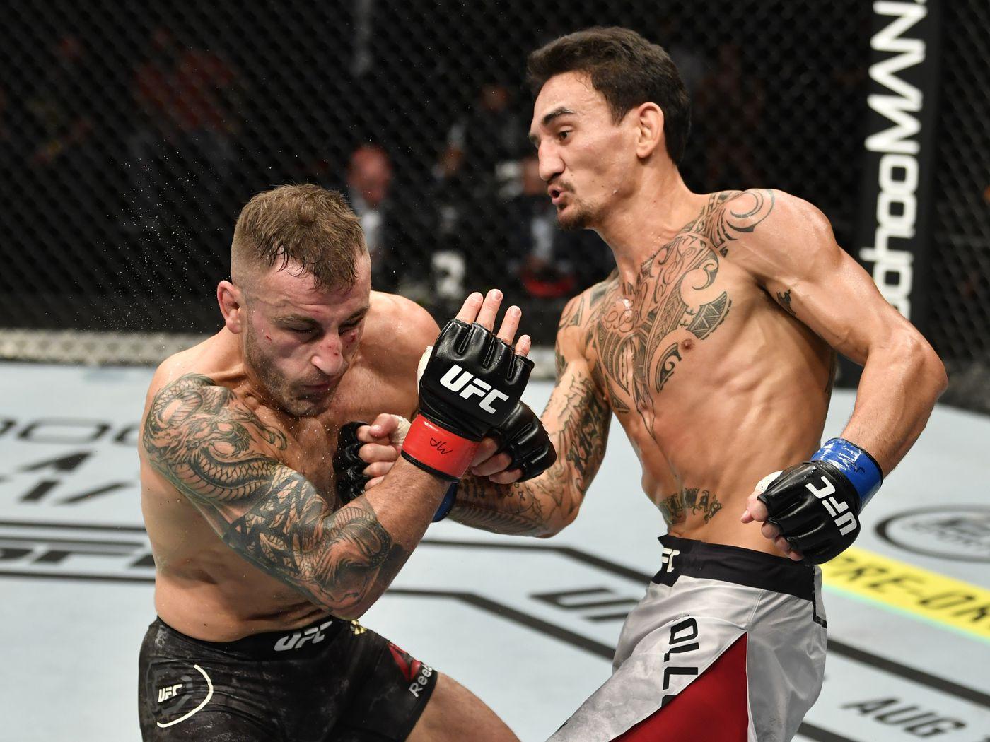 Midnight MMA Gloves MMA Boxing Muay Thai Training /& Fight