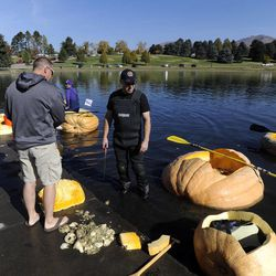 Andrew Israelsen finishes cutting out his pumpkin to race it as part of the 2013 Mountain Valley Seed Co. Ginormous Pumpkin Regatta at Sugarhouse Park on Saturday, October 19, 2013.