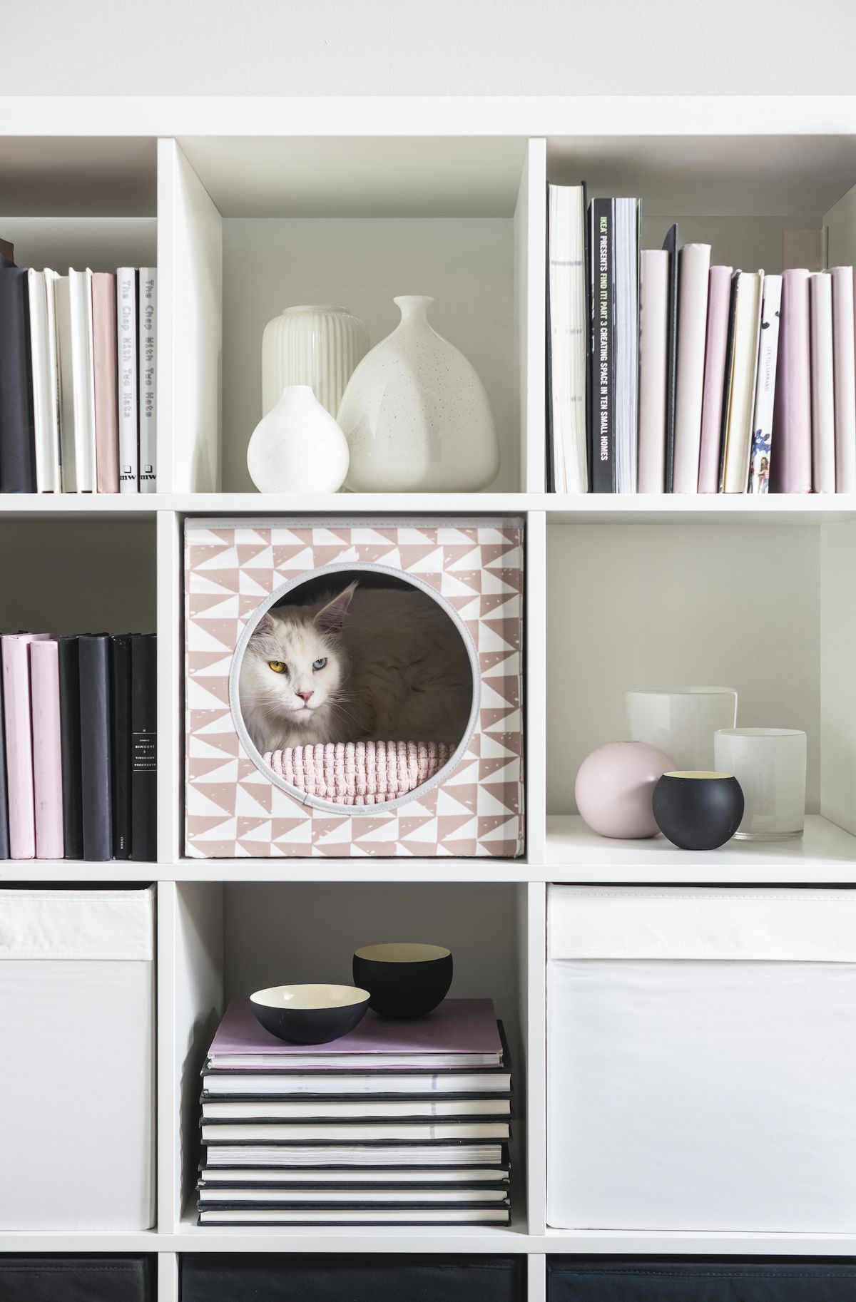 Cat in a pink patterned cube bed in a shelf.