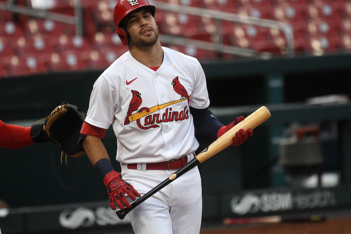 MLB: JUL 14 St. Louis Cardinals Summer Camp