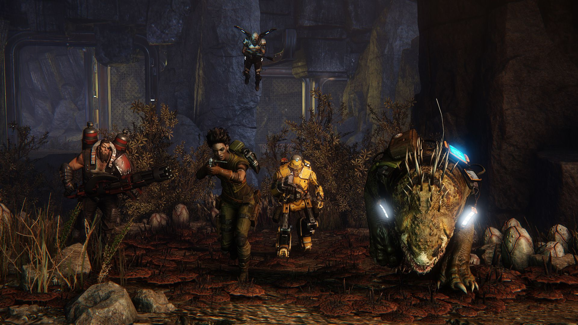 evolve review screen 2