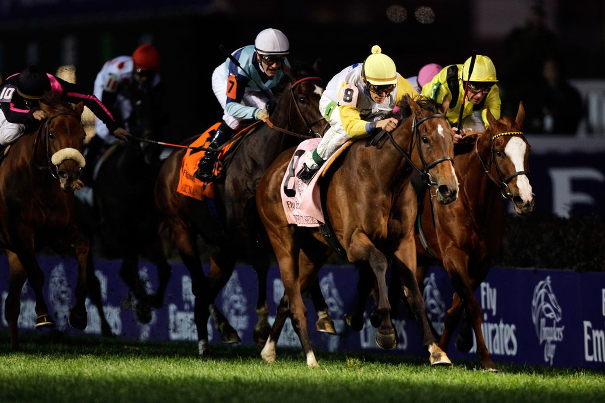 Breeders Cup 2012 Betting Guide Wagering And Payout