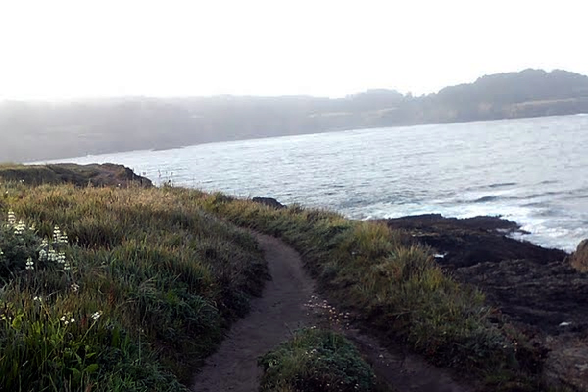 The running view from Mendocino Headlands State Park in California.