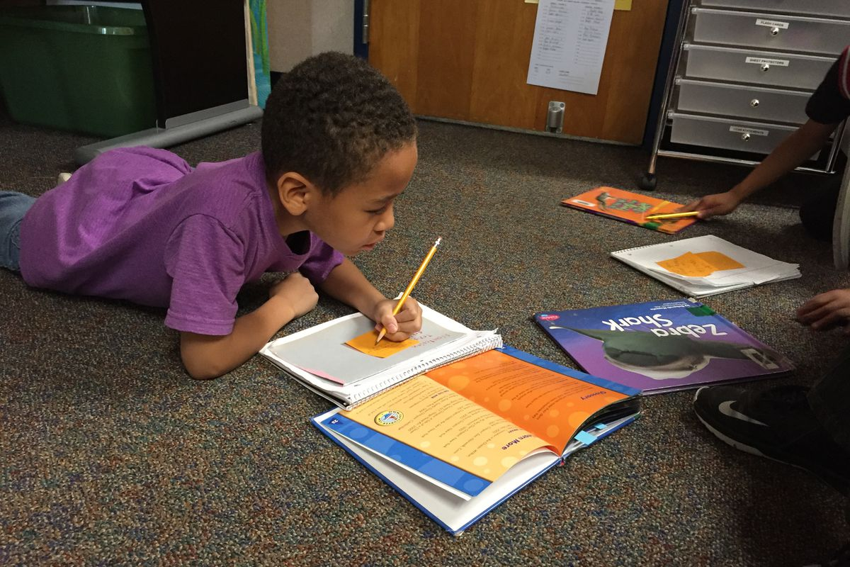 A second-grader in Wayne Township works on a reading assignment.