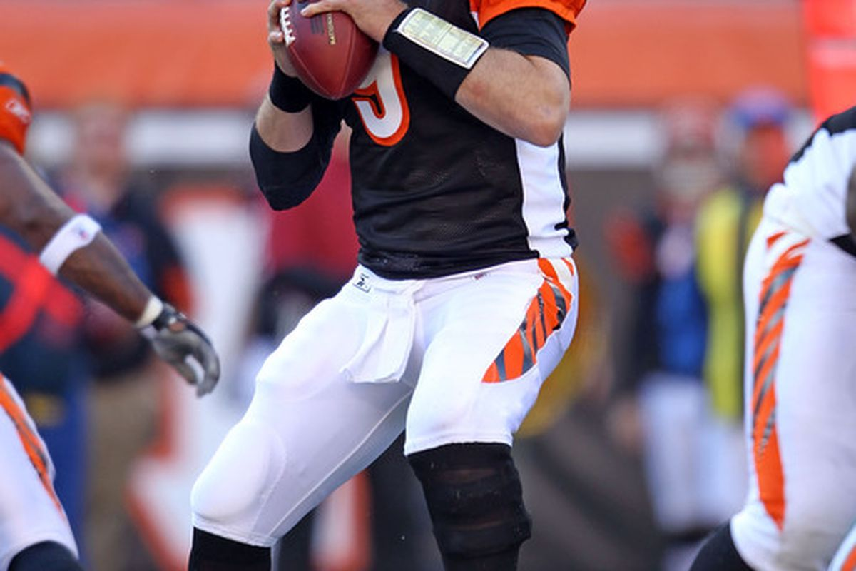 CINCINNATI - OCTOBER 31:  Carson Palmer #9 of  the Cincinnati Bengals throws a pass during the NFL game against the Miami Dolphins at Paul Brown Stadium on October 31 2010 in Cincinnati Ohio.  (Photo by Andy Lyons/Getty Images)