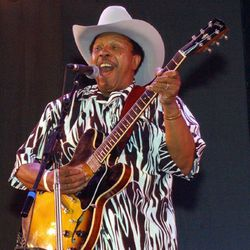 Lonnie Brooks on stage at Blues Fest in Grant Park in 2004. | Sun-Times file photo