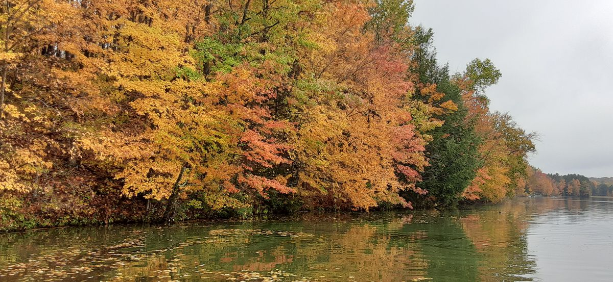 Fall arrives on the Wisconsin River. Credit: Rob Abouchar