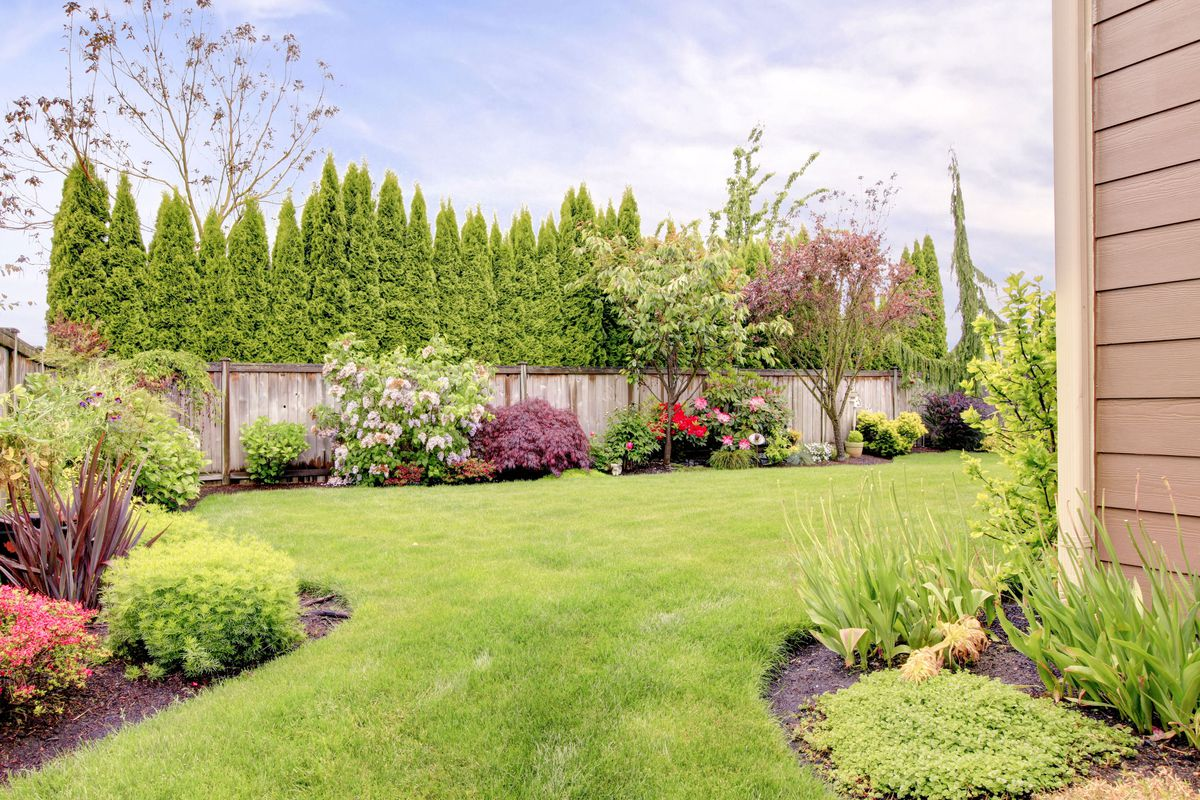 Landscaping a yard