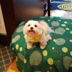 Chloe at Mason's Tennis Mart