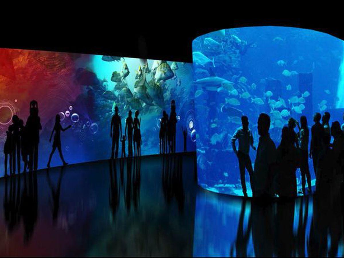 Aquarium of the Pacific rendering
