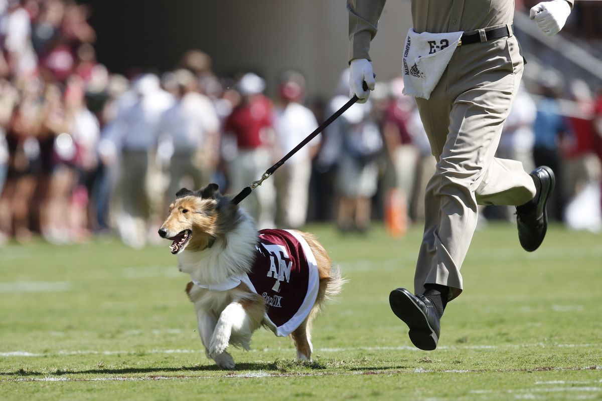 LADY REVEILLE LEADS THE CHARGE TO ANOTHER DISAPPOINTING SEC WEST FINISH