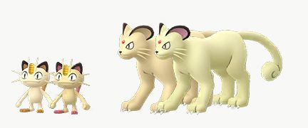 Meowth and Persian compared with their Shiny forms in Pokémon Go