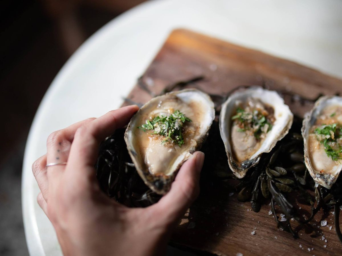 Oysters at Eberly