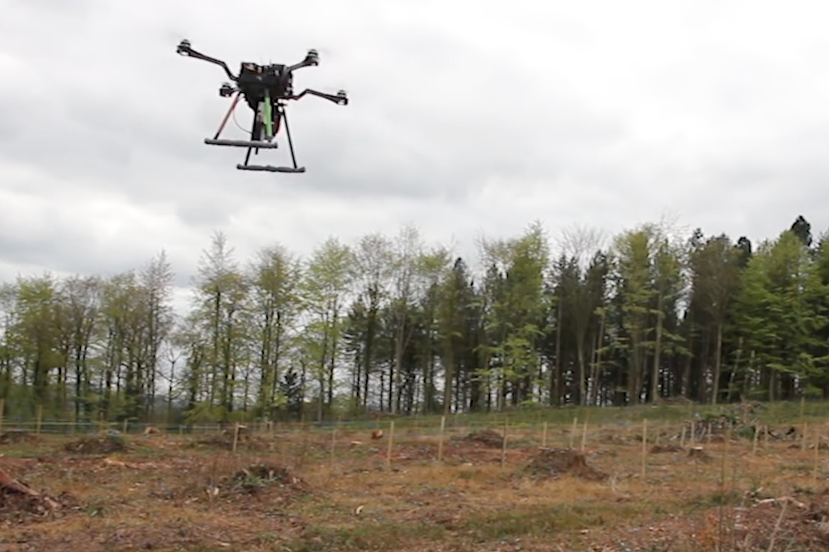 Tree-planting drones can sow 100,000 seeds a day - Curbed
