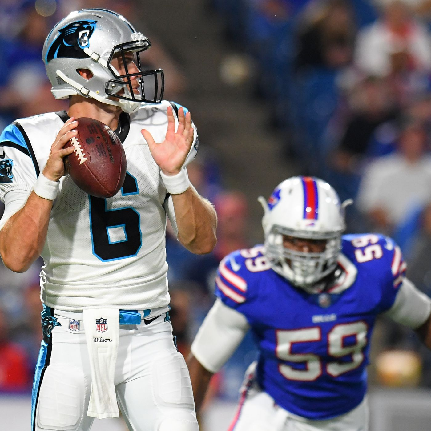 The case for Taylor Heinicke - Cat Scratch Reader fd8d2dbac