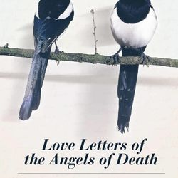 """""""Love Letters of the Angel of Death"""" is by Jennifer Quist and is a 2013 Whitney Awards finalist. The awards recognize novels by Mormon authors."""