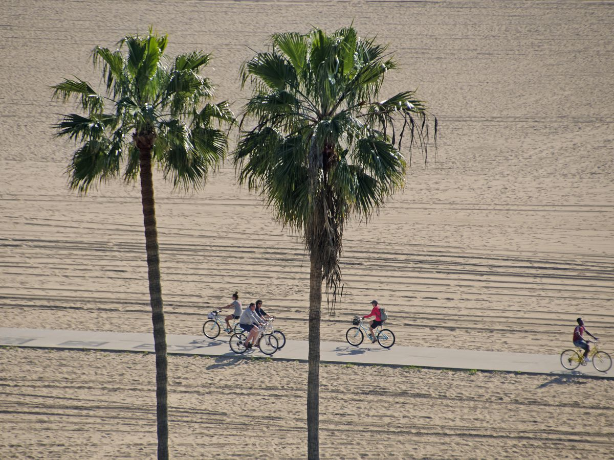 There are two tall palm trees in the foreground. In the distance is a path with people riding bicycles. The path is surrounded by sandy beach on both sides..