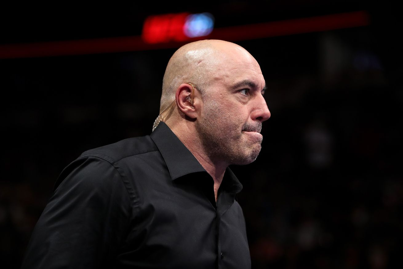Rogan Changed His Mind About Retiring From UFC