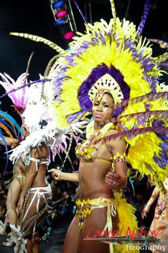 Carnival Nationz Band Launch 2013