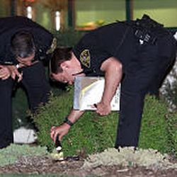 Salt Lake County sheriff's deputies examine the gun found near a restaurant in Sandy, after a drug-addled Quinn Martinez went on a rampage and shot several people, two of whom died at the scene.
