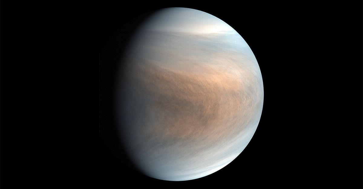 Discovery of noxious gas on Venus could be a sign of life thumbnail