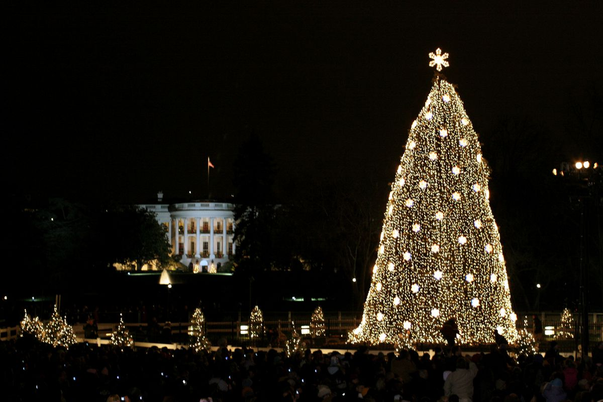 The National Christmas tree is lit during the 2005 Christmas