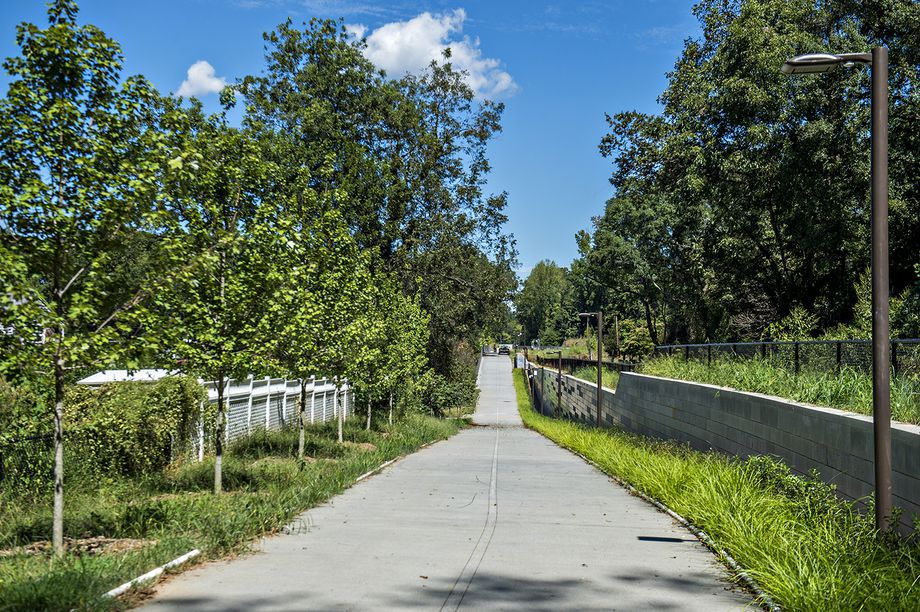 A concrete trail with trees on either side of it.
