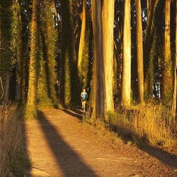 The Presidio trails alone are enough to keep you busy for a weekend. With 24 miles of routes to explore —the 12 trails range between 0.7 miles and 4.3 miles— there's an option for every fitness level in this massive park. Check the Presidio Tr