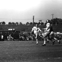 1963- #13 QB Steve Tensi running with the football during FSU game in Tallahassee against NCSU.