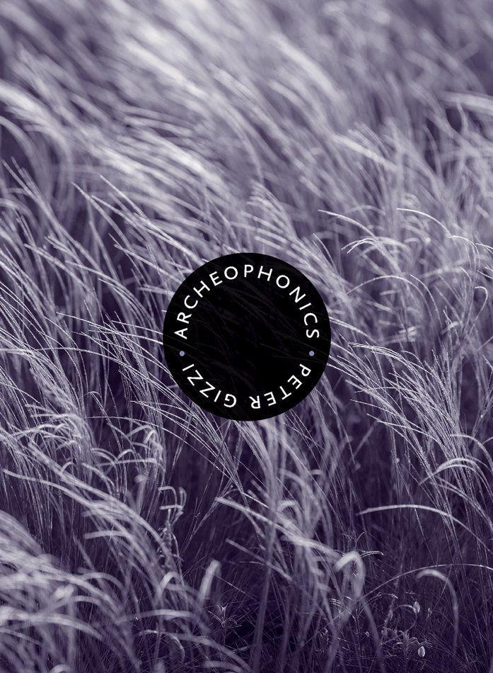 Archeophonics cover (Peter Gizzi)