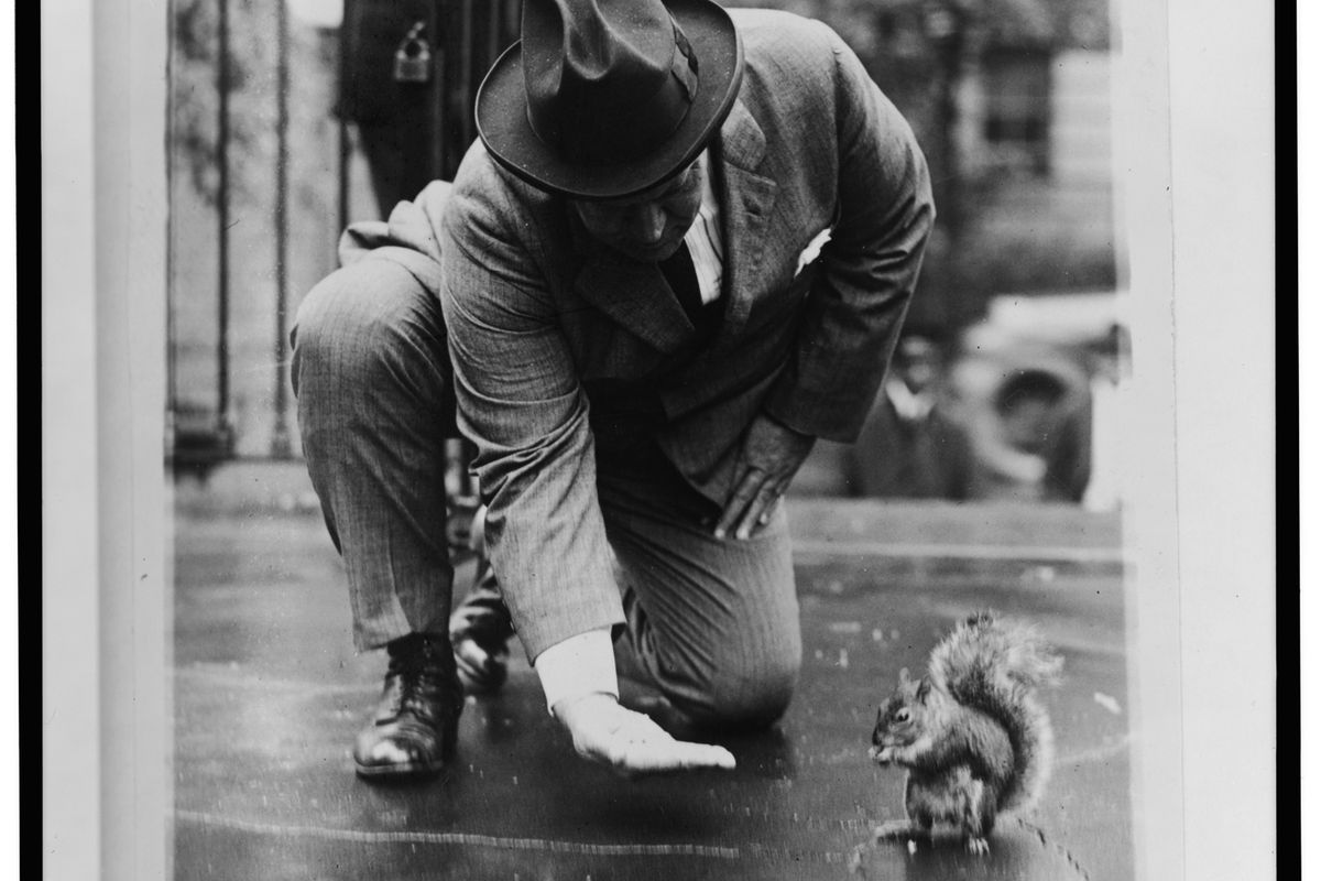 Pete the squirrel lived the good life.