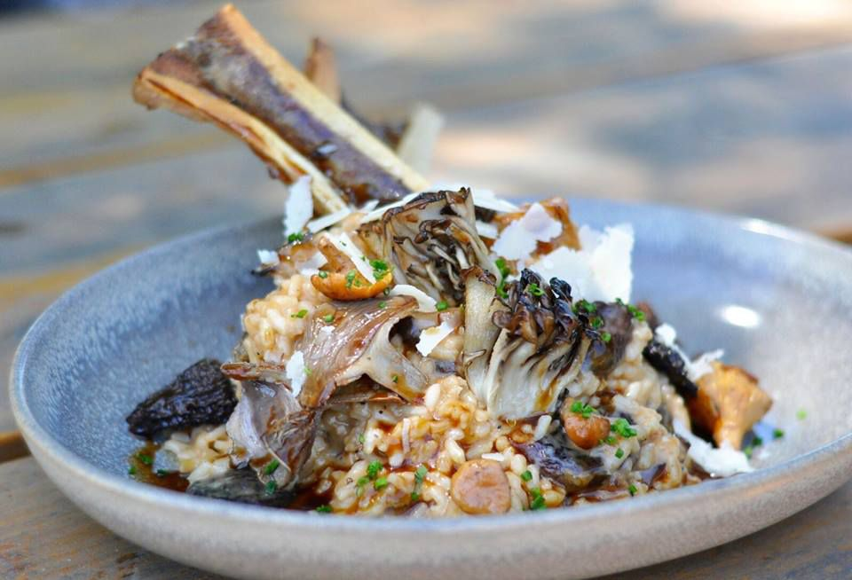 Beef bone marrow and wild mushroom risotto at Red Ash