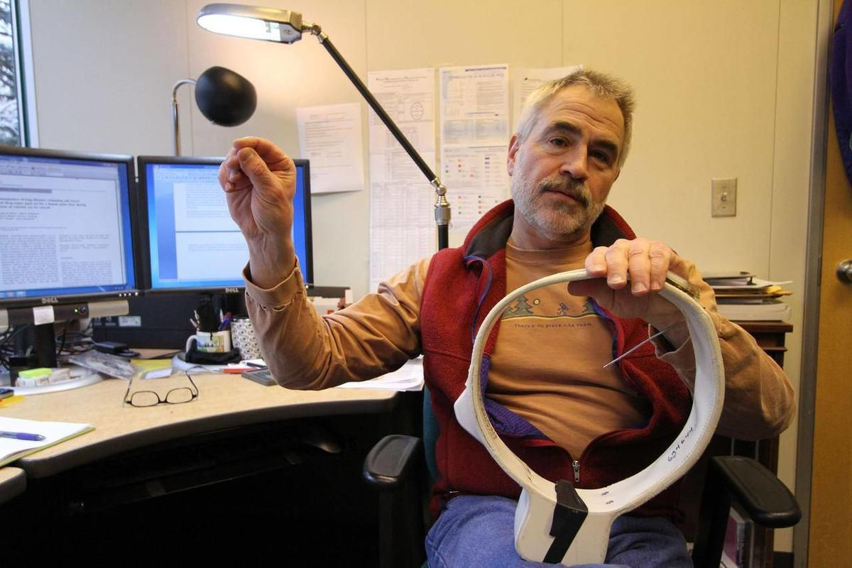 In this Jan. 28, 2011 photo, research zoologist George M. Durner of the U.S. Geological Survey discusses the components of a radio collar used in 2008 Beaufort Sea polar bear research, at his office in Anchorage, Alaska.