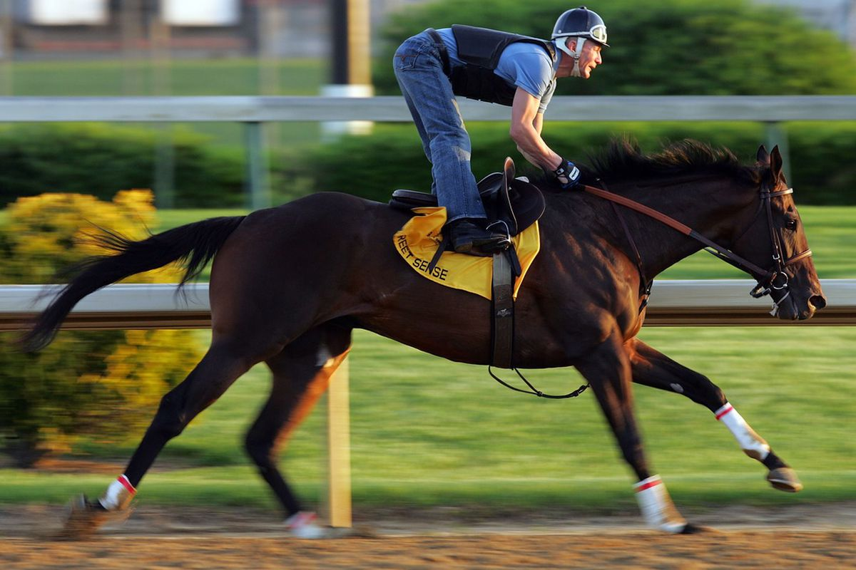 Street Sense is one of four horses since 2006 to run his final Breeders' Cup prep race on a synthetic surface and then go on to win a Breeders' Cup race on dirt. (Photo by Andy Lyons/Getty Images)