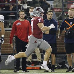 Washington State running back Max Borghi runs for a touchdown during the second half of an NCAA college football game against Utah State, Saturday, Sept. 4, 2021, in Pullman, Wash. Utah State won 26-23.